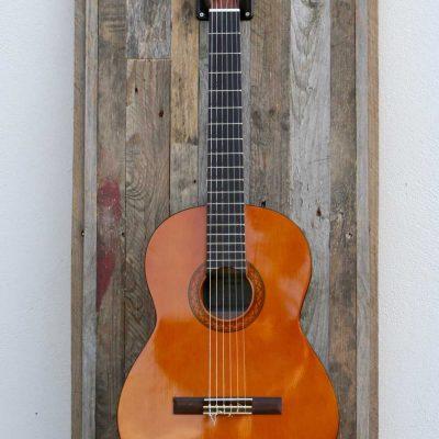 Guisplay Guitar Display Palette 17